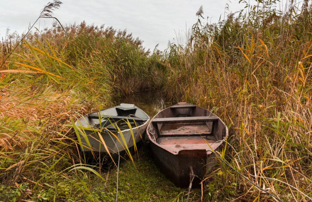 """Kierunek: obszary Programu """"Natura 2000"""" – warsztaty fotograficzne Kasjana Farbisza"""