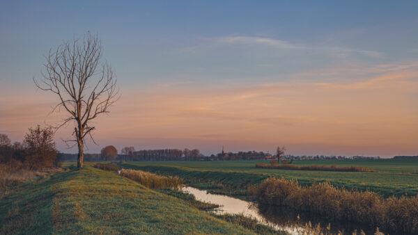 Kanał w okolicach Gryżyny, fot. Piotr Nędzewicz