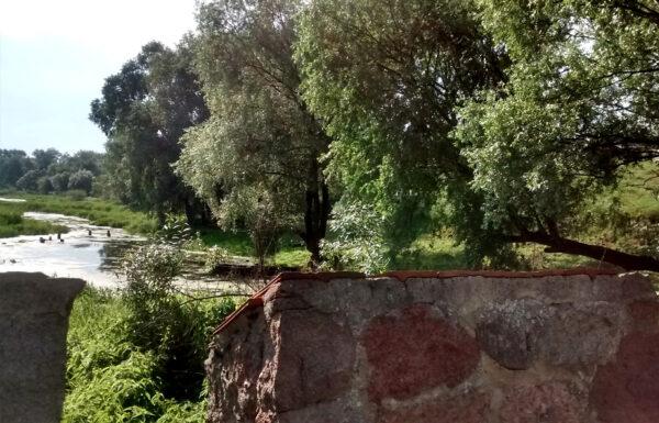 Widok z klasztornego ogrodu, fot. Emilian Prałat